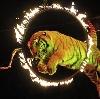 Цирки в Калачинске